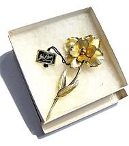 Large Vintage CORO Brooch Gold tone Flower in Original John Wanamaker Box Tags image 2