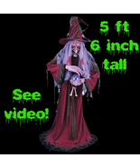Life Size Animated Light Sound FORTUNE TELLER W... - $149.97