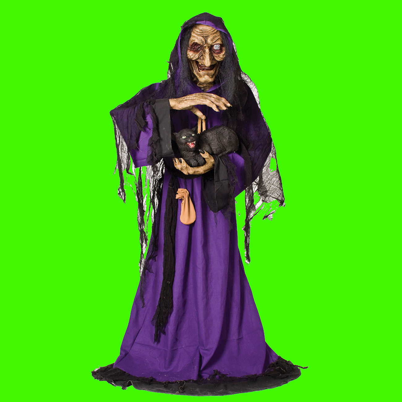 Life Size Animated Light Sound WITCH with BLACK CAT Haunted House Halloween Prop