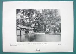 INDIA Bawan Bhawan Sacred Fish Tank - 1901 Offset Litho Print - $6.42
