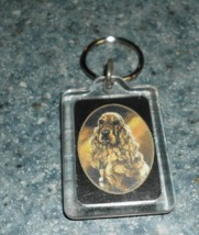 Brand New Buff COCKER SPANIEL Key Chain For Cocker Spaniel Rescue Charity - $6.49