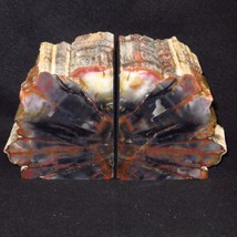 Exquisite Awesome HANDMADE ARIZONA Rainbow Petrified Wood BOOKENDS OVER ... - $349.00