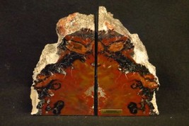 Exquisite Awesome HANDMADE ARIZONA Rainbow Petrified Wood BOOKENDS OVER ... - $299.00
