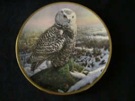 SNOWY OWL collector plate SEEREY-LESTER Morning Mist NOBLE OWLS OF AMERICA - $29.99