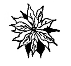 Poinsetta flower christmas Rubber Stamp  made in america free shipping - $13.64