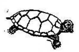 Turtle sea life aquatic Rubber Stamp made in america free shipping - $13.63
