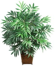 Nearly Natural 6556 Bamboo Palm with Wicker Basket Decorative Silk Plant... - $68.64