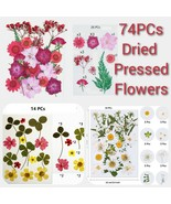 Dried Pressed Flowers for Resin DIY - $14.99