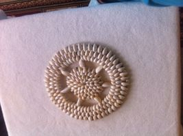 6 Cowrie Shell Coasters / Hot Mats Various Sizes - $9.95