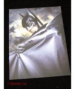 Batman Forever Video Promo Brochure 1990s - $15.99