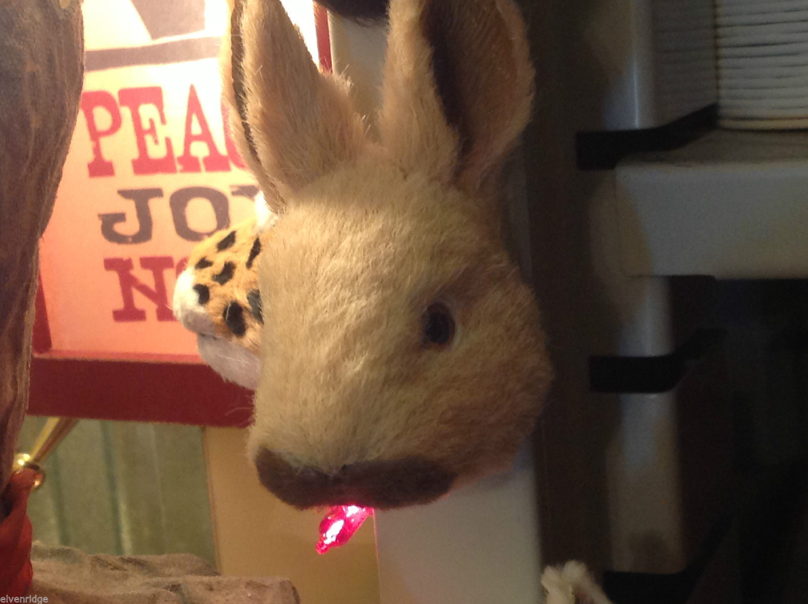 Brown w black nose bunny rabbit furry refrigerator magnet in 3D