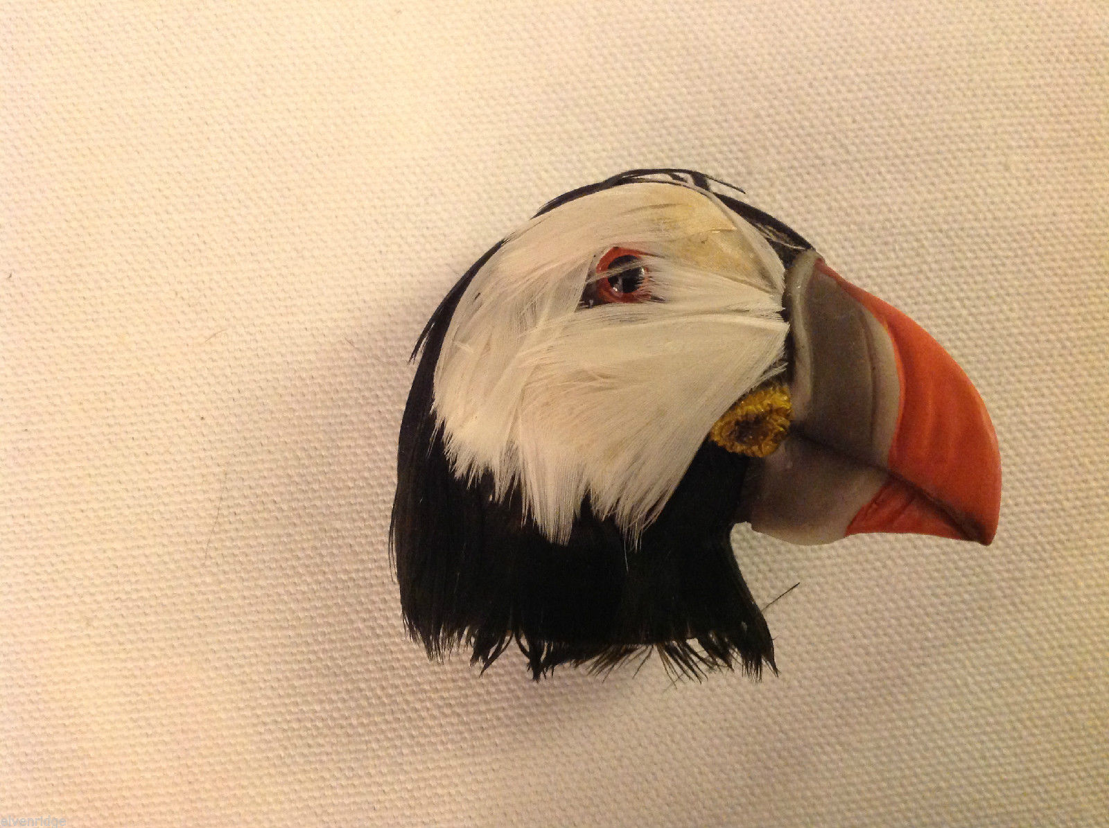 Puffin head with  real feathers refrigerator magnet in 3D