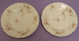 Set 2 Haviland Limoges Plates Pink Roses Blue Accents - $30.68