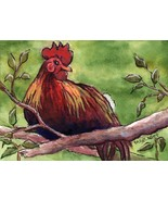 ACEO Original Painting Chicken On Branch bird animal feathers poultry farm - $16.00