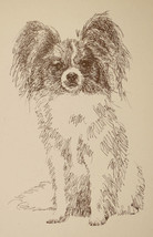 Papillon Dog Breed Art Portrait Print #34 Kline draws your dogs name fre... - $49.45