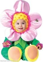 Precious Petals Baby Girls Flower Infant InCharacter Halloween Costume S... - $27.89