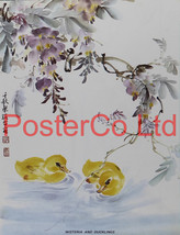 Wisteria And Ducklings (Oriental Art) - Chow Ch... - $51.00