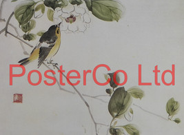 Narcissus Flycatcher and Magnolia Sieboldii (Oriental Art) - Koyo - Fram... - $51.00