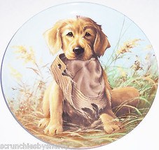 Golden Retriever Collector Plate Caught Act 1987 United Kennel Club COA ... - $59.95