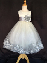 Ivory Tulle Silver Rose Petal Dress Flower Girl Wedding Holiday Winter #24 - $16.82+