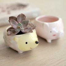 Kawaii Little Animals Ceramic Flowerpot Pig Ele... - $6.56