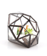 Diamond Geometric Glass Terrarium Container, Mo... - $34.42