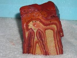 Rough Utah Wonderstone--Volcanic Rhyolite - $7.99