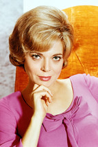 Barbara Bain Mission Impossible Glamour 18x24 Poster - $23.99
