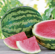 10 Seed Triple Crown Hybrid Watermelon (Seedless) The Best Tasting Red V... - $10.44