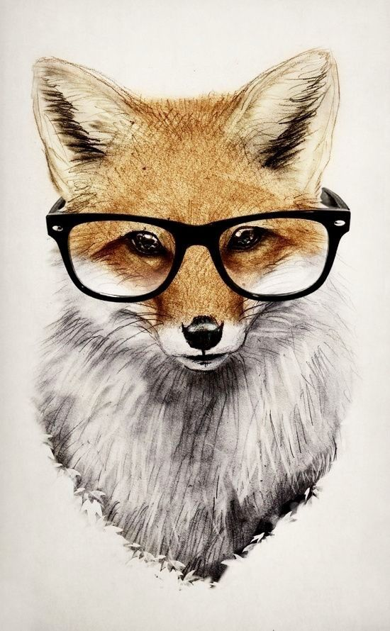 MR FOX WEARING GLASSES ART IMAGE Poster Gloss Print ...