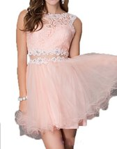 Fanmu Sleeveless Lace Tulle Short Homecoming Dresses Prom Gowns Pink US 12 - $95.99