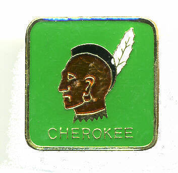 12 Pins - CHEROKEE INDIAN native american hat pin #225