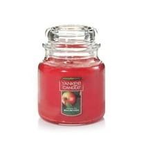 Yankee Candle Macintosh Medium Jar Candle 14.5  oz. NEW - $9.89