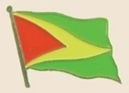 12 Pins - GUYANA , flag hat tac lapel badge pin sp219 - $12.00