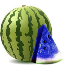 10Pcs New Variety Plant Blue Watermelon Seeds Vegetable Organic Home Garden - $3.00