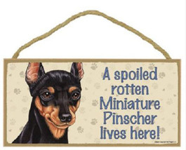"Spoiled Rotten Miniature Pinscher Lives Here Sign Plaque Dog 10"" x 5"" pe... - $9.94"