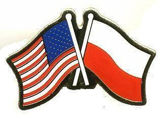 12 Pins - POLAND & AMERICAN FLAG polish us usa pin 729
