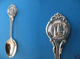 Carlsbad Caverns National Park New Mexico Souvenir Collector Spoon Collectible - $5.95