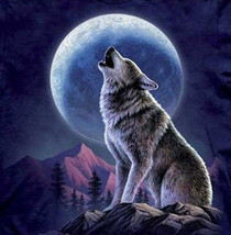 Wolf And Moon Cross Stitch Pattern***LOOK*** - $4.95