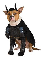 Batman The Dark Knight Rises Pet Costume, Medium - $4.01