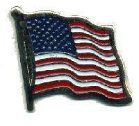 12 Pins - USA FLAG , american hat lapel pin #571