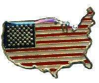 12 Pins - United States Of America , usa flag pin #1892