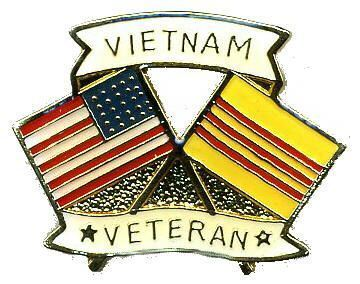 12 Pins - VIETNAM VETERAN , american flag war pin 740