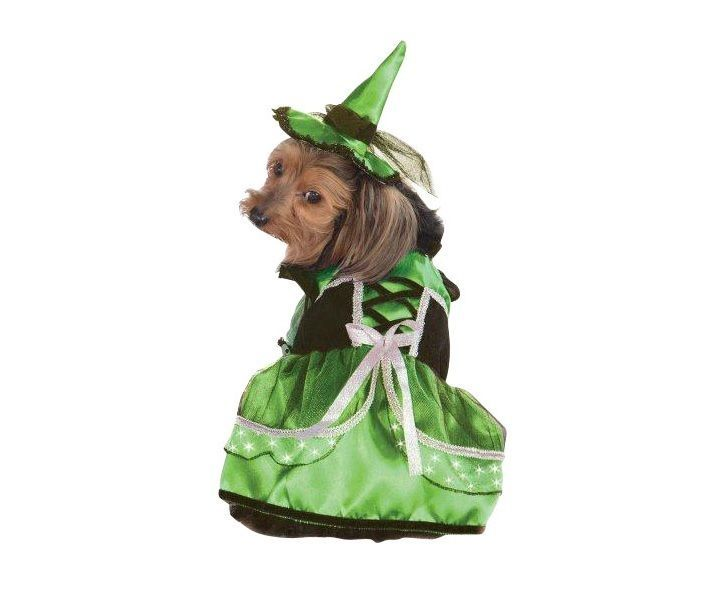 Halloween Neon LED Witch Dog Costume - Halloween party - photo - Trick or treat