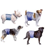 Pooch Pants Reusable Male Wraps for Dogs - 4 sizes - microfine technology - £17.00 GBP+