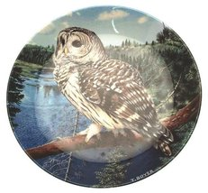 Wedgwood owl plate The Majesty of Owls Barred Owl Trevor Boyer CP1506 - $48.99