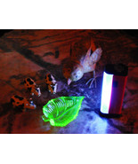 "6"" U.V. Blacklight Portable U.V. Black Light - Red - Vintage Glass Glows + more - $8.75"