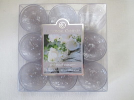 Colonial Candle  DRIFTWOOD BLOSSOM TEALIGHTS (9) - $9.50
