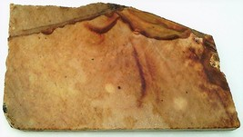 Picture Jasper 2 Gemstone Slab Cabbing Rough - $4.60