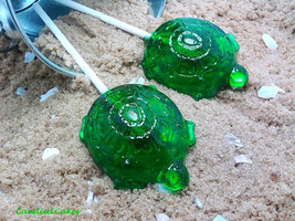 12 TURTLE LOLLIPOPS - Pick Any Color and Flavor - $14.99